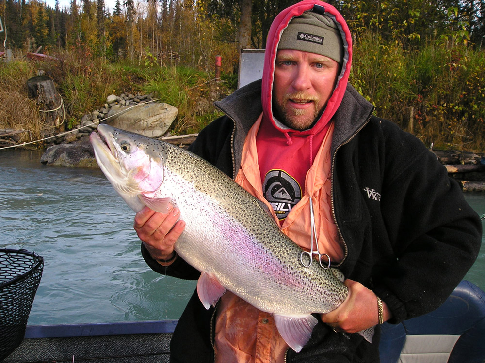 Beautiful Rainbow Trout Colors On Kenai River AK 1000