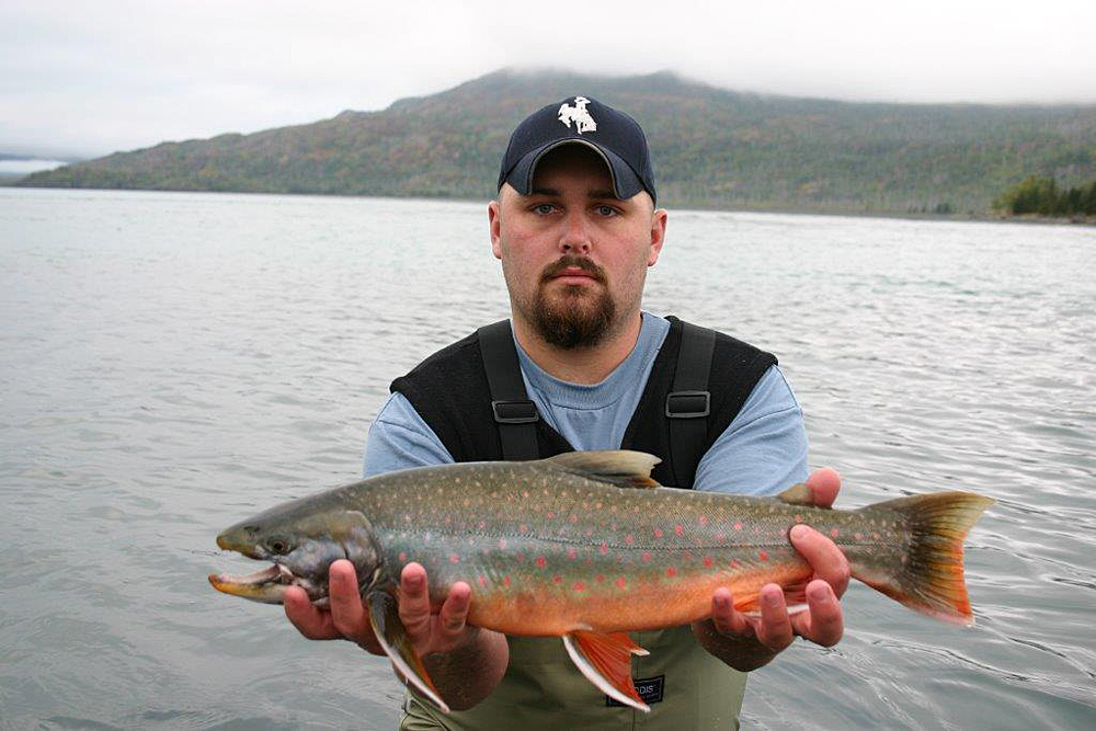 Nice Dolly Varden On Kenai River Alaska 1000