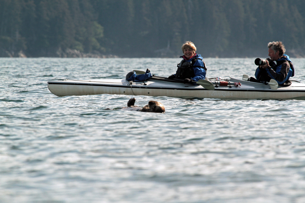 See Alaska Wildlife On Kayak Tours 1000