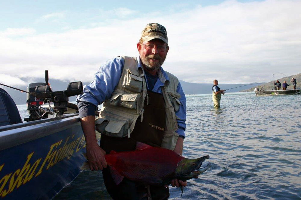 Sockeye In Spawning Mode In Alaska 1000