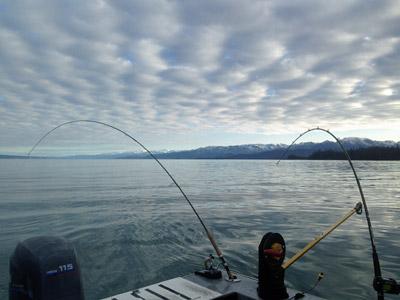 Kenai River Fishing Guides for King Salmon