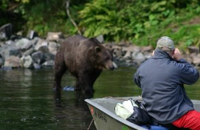 Alaska Bear Viewing and Bear Watching Tours